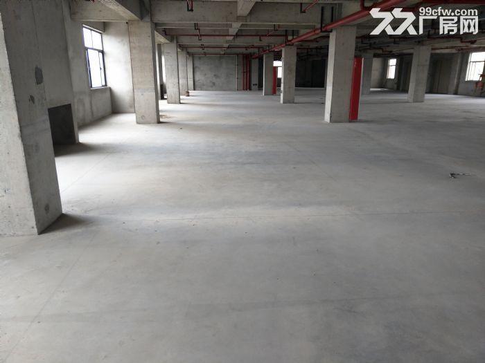 浦东自贸区厂房出租10000−−−55000平方出租租金1.1−−1.6元-图(2)