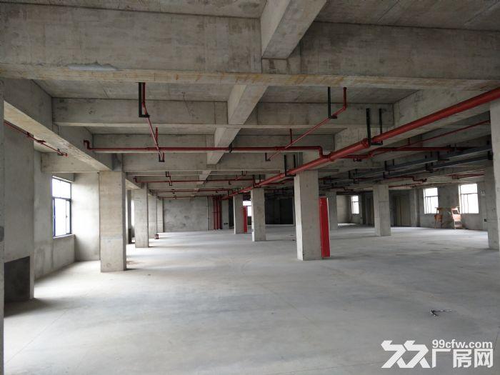 浦东自贸区厂房出租10000−−−55000平方出租租金1.1−−1.6元-图(3)