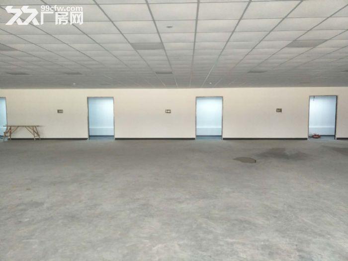 浦东自贸区厂房出租10000−−−55000平方出租租金1.1−−1.6元-图(7)