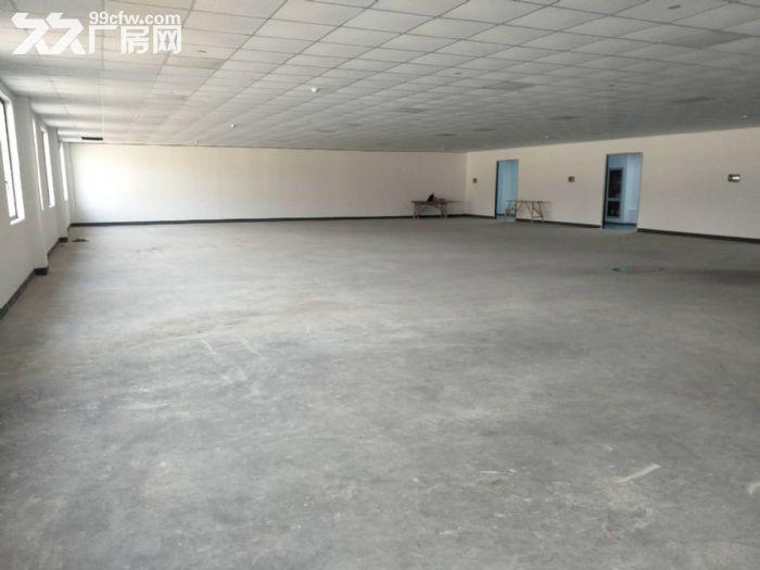 浦东自贸区厂房出租10000−−−55000平方出租租金1.1−−1.6元-图(6)