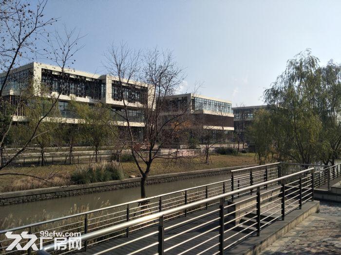 园区直招,104板块,2000平企业独栋出租,可环评,可研发-图(4)