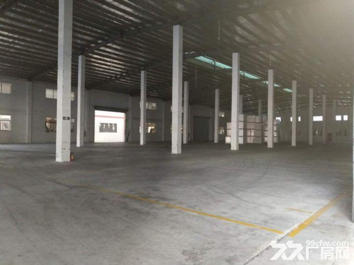 出租大岭山18000方钢结构厂房独门独院可做仓库物流中心-图(3)