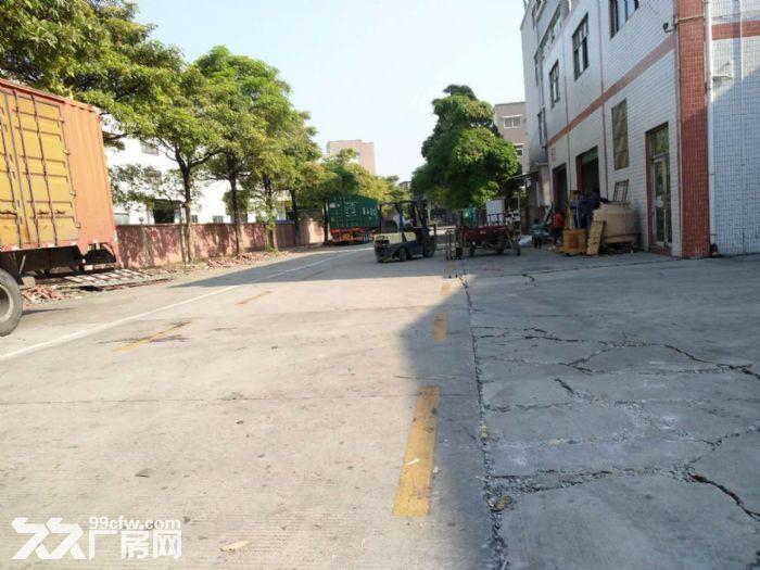 出租大岭山18000方钢结构厂房独门独院可做仓库物流中心-图(7)