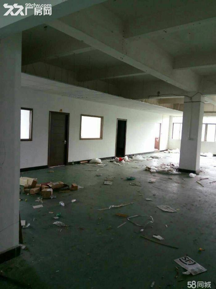 出租长安虎门大岭山厂房独门独院交通便利钢结构-图(2)