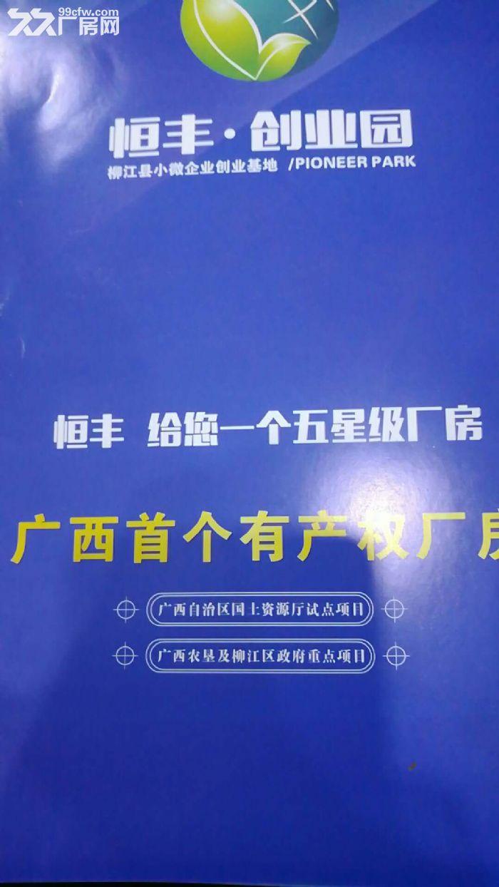 出租新兴工业园区标准厂房(享受政府补贴8元/米)-图(1)