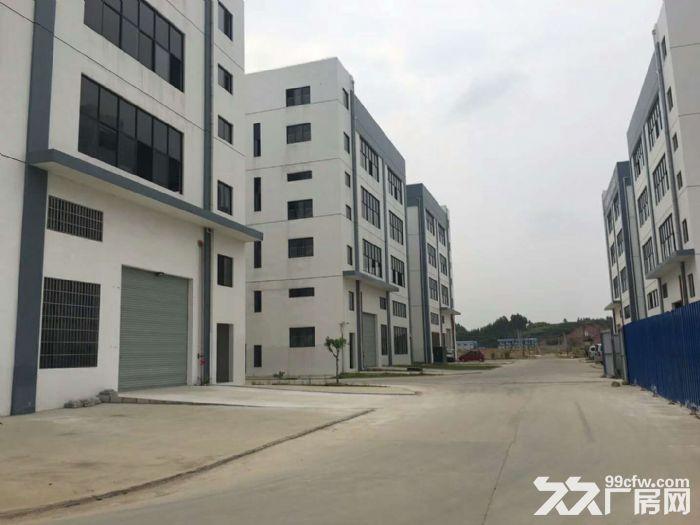 出租新兴工业园区标准厂房(享受政府补贴8元/米)-图(3)