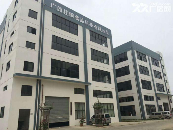 出租新兴工业园区标准厂房(享受政府补贴8元/米)-图(4)