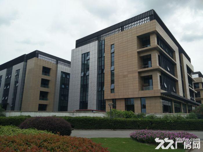 浦东自贸区厂房出租100−−−5000平方精装修出租租金1.2−−2元-图(2)