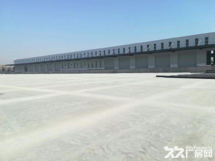 泰安低价仓库,仓库面积20万㎡,露天堆场6万㎡(长期有效)-图(1)
