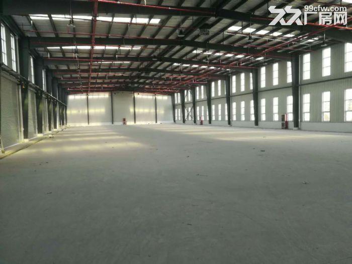 泰安低价仓库,仓库面积20万㎡,露天堆场6万㎡(长期有效)-图(3)