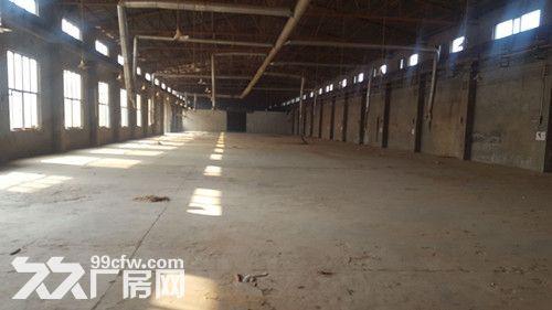 北辰区双口镇2550平厂房-图(4)