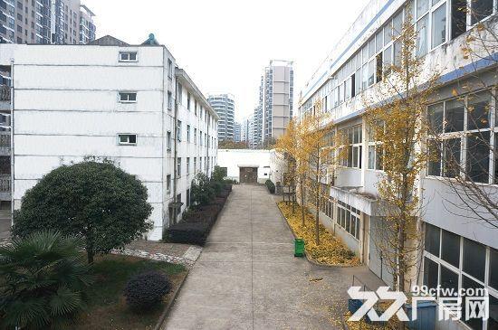 镇江句容市区繁华地段,临街厂房招租-图(2)