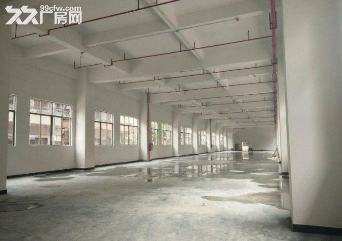 火炬小隐村标准一楼1000平格局方正厂房招租-图(2)