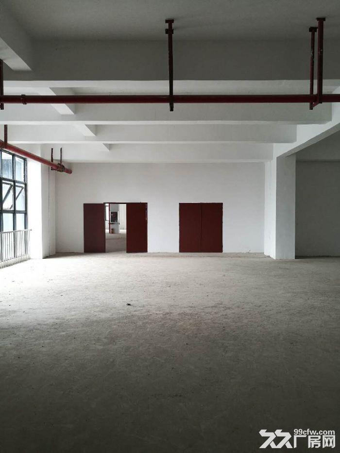 江南经开区金凯路标准食品厂房,独栋一万平带有一楼(仅3千出头)-图(3)