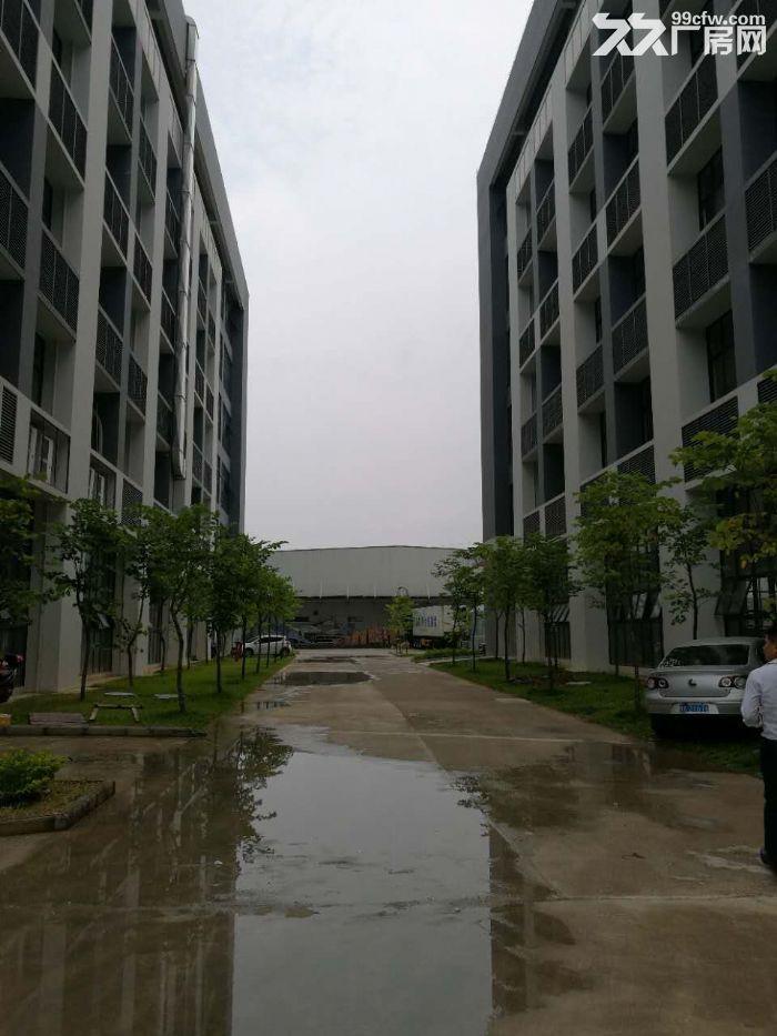 江南经开区金凯路标准食品厂房,独栋一万平带有一楼(仅3千出头)-图(6)
