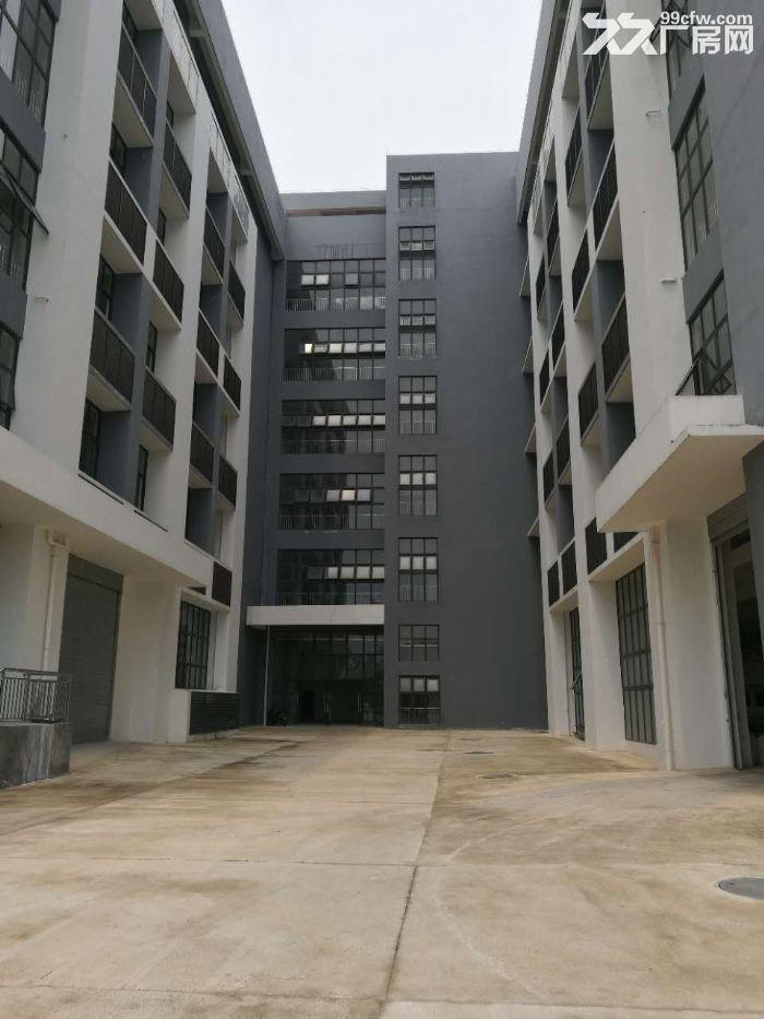 江南经开区金凯路标准食品厂房,独栋一万平带有一楼(仅3千出头)-图(7)