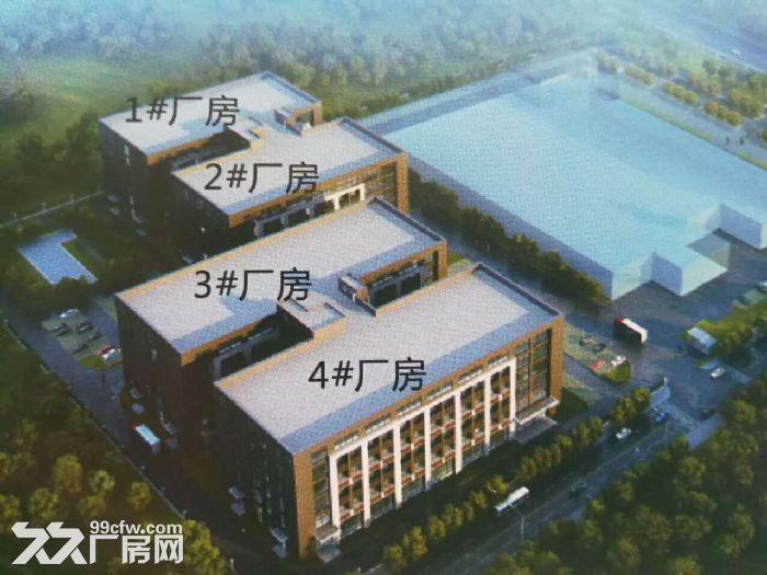 江南经开区金凯路标准食品厂房,独栋一万平带有一楼(仅3千出头)-图(8)