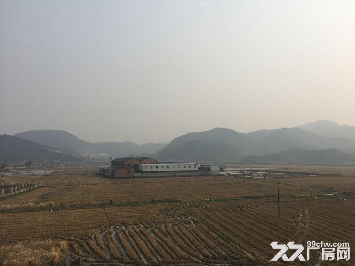 宁波江北30亩地仓储用地出租可长租大型超市仓储优先-图(1)