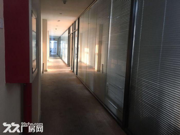 亦庄东区独立厂办一体3700平-图(5)