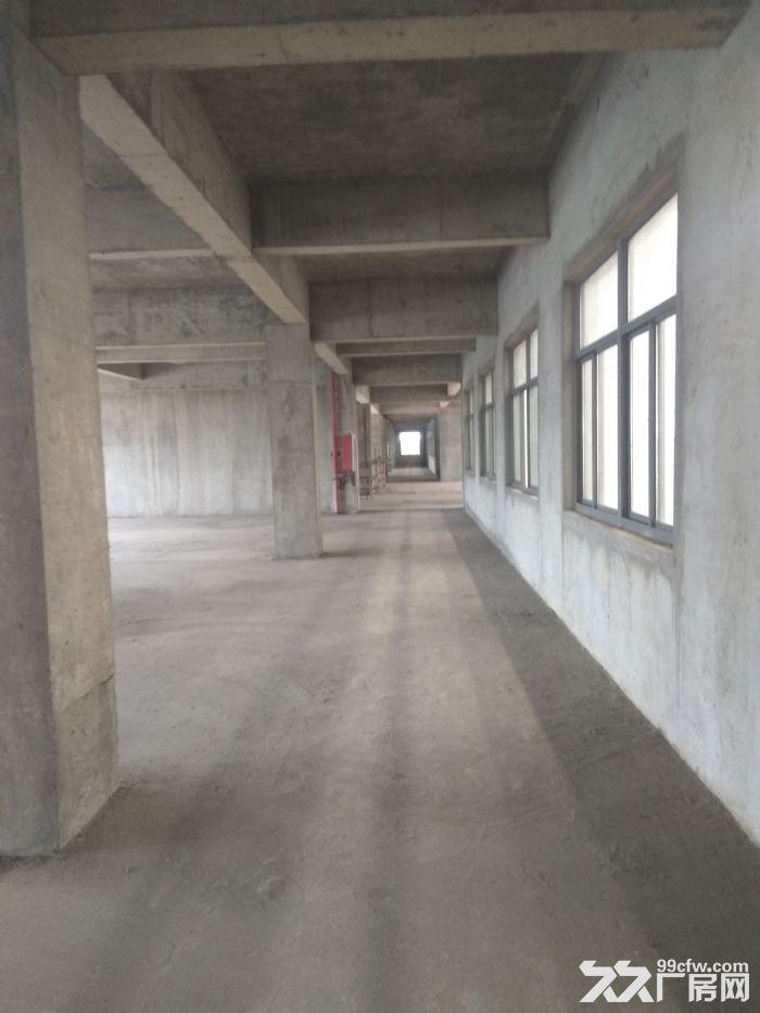 出租江阴申港街道独门独院机械厂房26000平米-图(6)