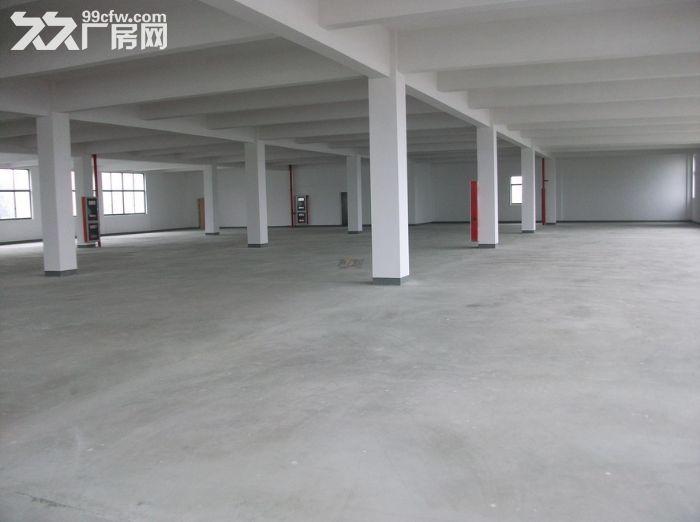 出租滨湖区华庄14000平优质独门独院厂房可分组-图(1)