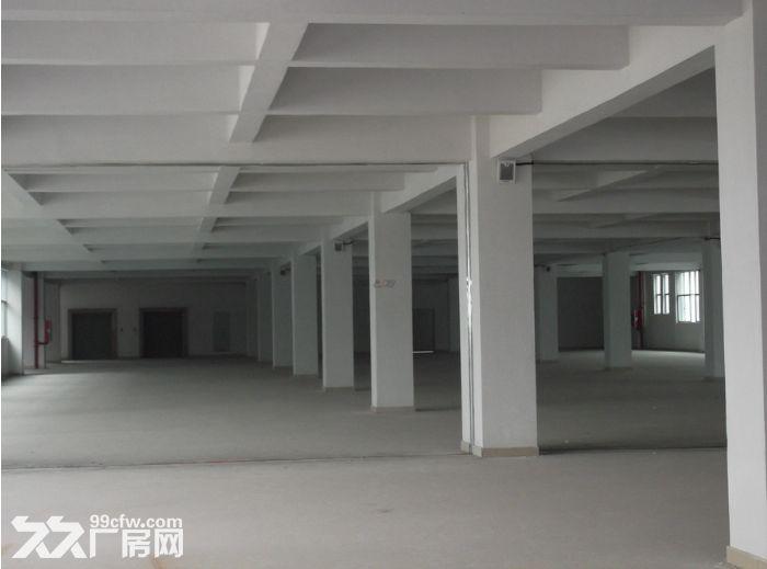 出租滨湖区华庄14000平优质独门独院厂房可分组-图(2)
