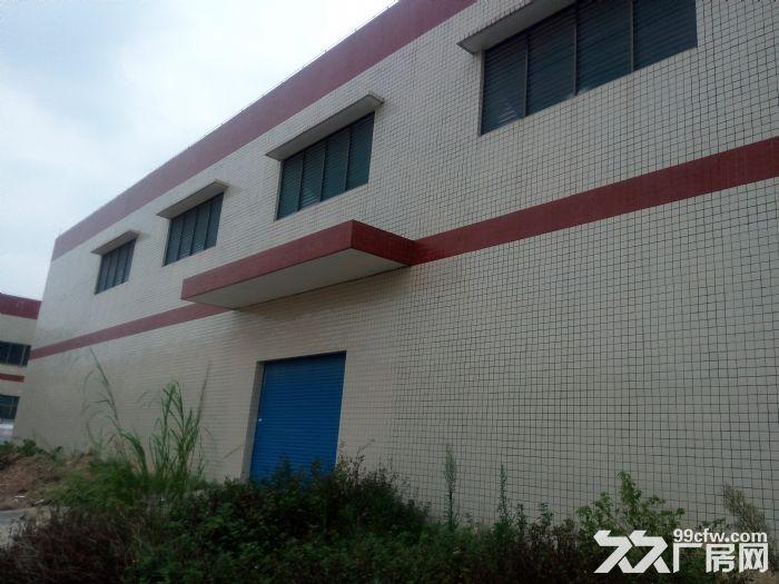 大旺市中心附近有7500仓库招商!!!-图(1)