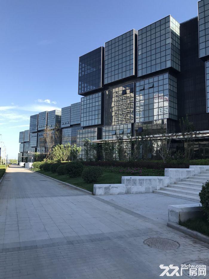 西青全新商务园区租售350−−13000平可分割注册-图(1)