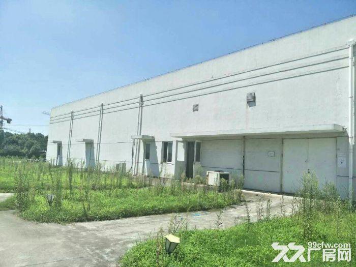 青浦工业区30亩水泥硬化空地和4000平方单层厂房仓库出租,绿证-图(2)