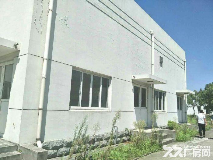 青浦工业区30亩水泥硬化空地和4000平方单层厂房仓库出租,绿证-图(3)
