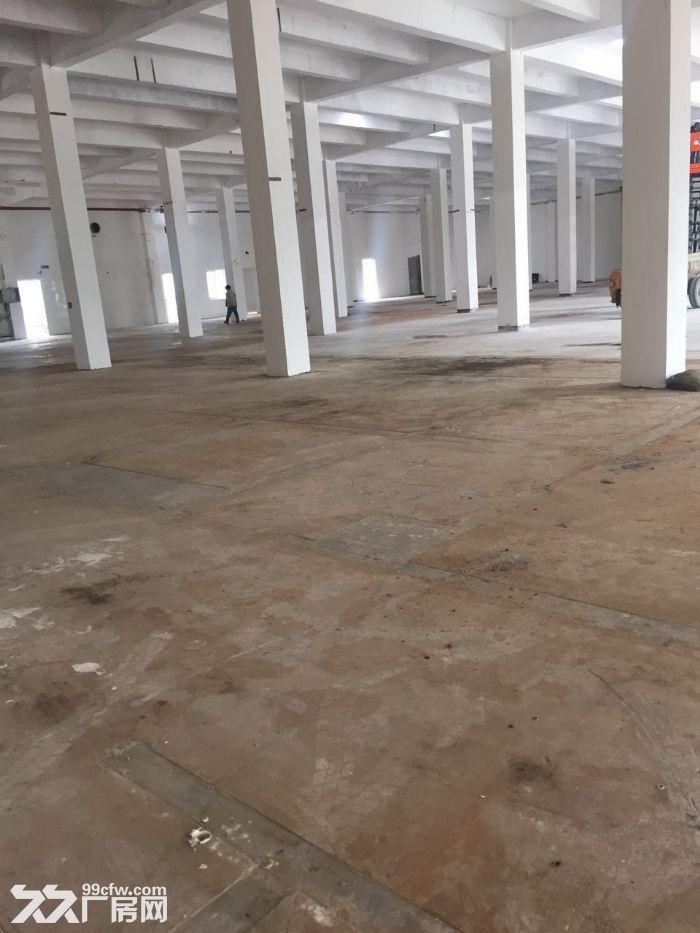 青浦工业区30亩水泥硬化空地和4000平方单层厂房仓库出租,绿证-图(4)