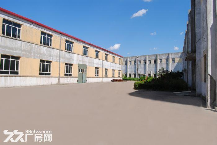 五万米大库出租库房-图(7)