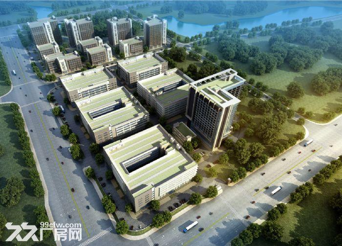 南宁高新区有标准厂房、写字楼出租售(可分割)v-图(3)