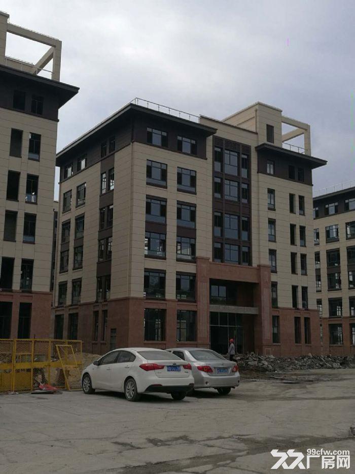 104全新独栋研发楼,周边改商业住宅,仅剩5栋-图(1)