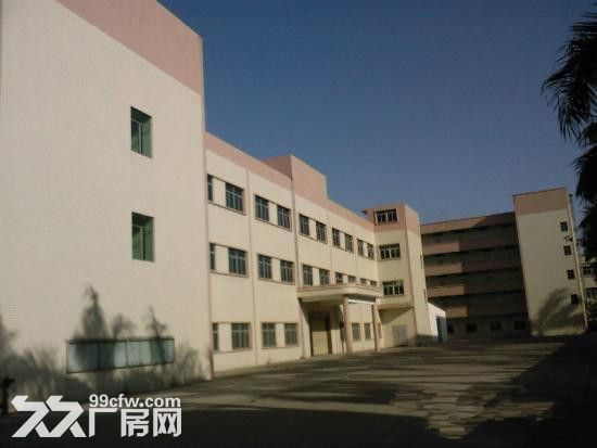 《靓》惠阳深汕路附近全新红本厂房便宜招租-图(2)