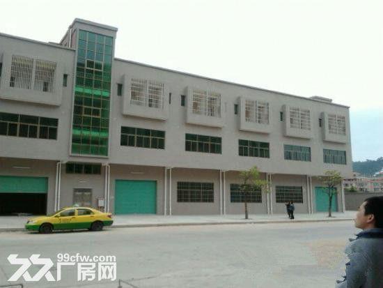 《靓》惠阳深汕路附近全新红本厂房便宜招租-图(3)