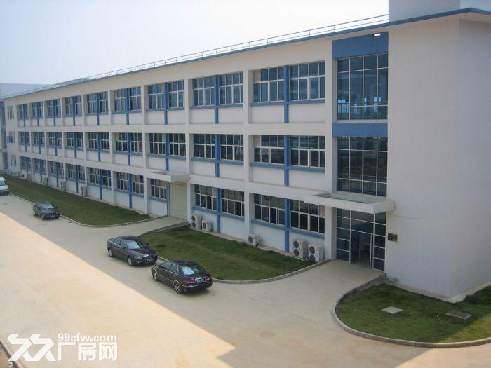 《靓》惠阳深汕路附近全新红本厂房便宜招租-图(4)