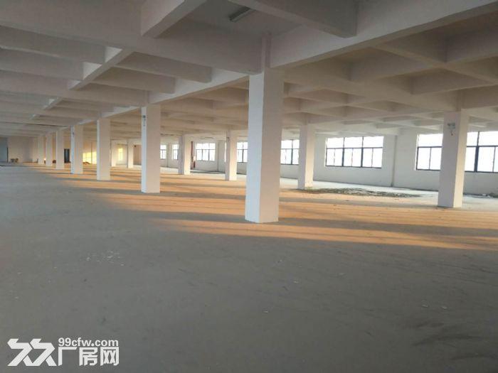 标准厂房环境好,生活方便合适各个行业,欢迎来电定房-图(3)