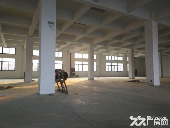 标准厂房环境好,生活方便合适各个行业,欢迎来电定房-图(6)
