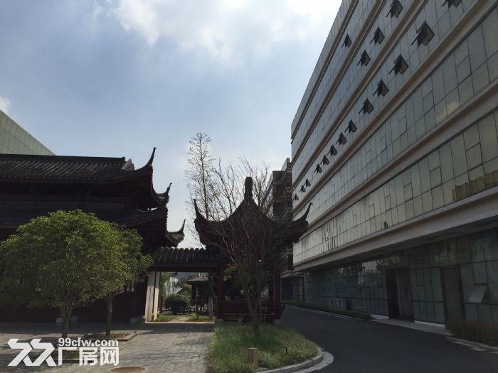 江阴璜土小湖路27号3万平米厂房招租-图(3)