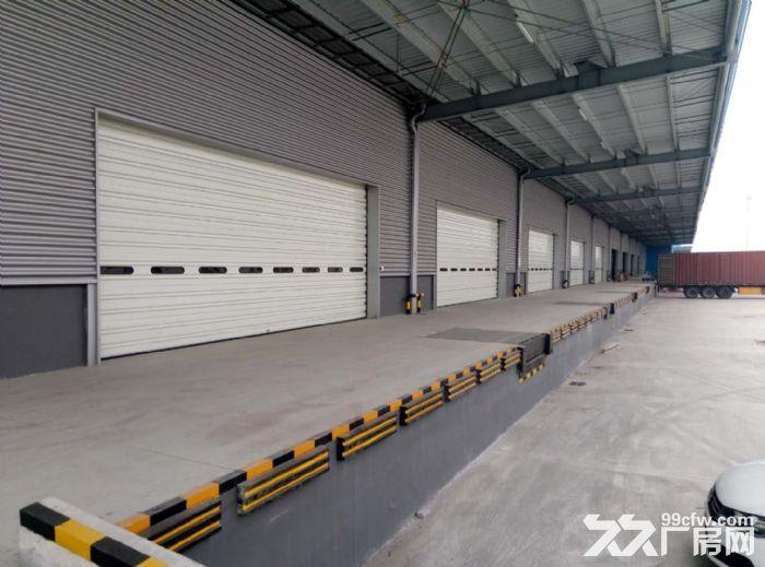 出租青浦工业园区13000平双边卸货高标仓库图片