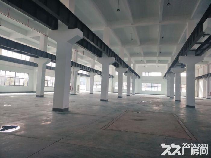 独栋分租一千平米一楼高8米可架行车-图(2)