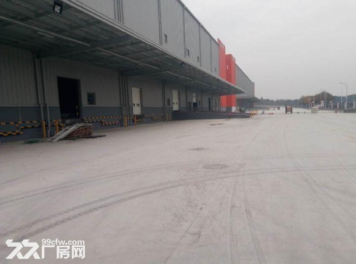 余杭临平大型物流园10000平物流标准仓库出租-图(1)