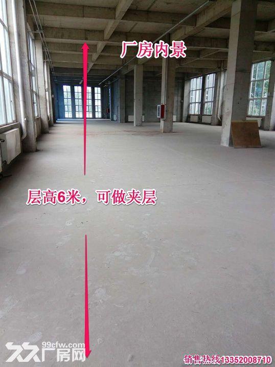 【装备制造首选园区】50年大产权标准厂房园区配套齐全-图(5)