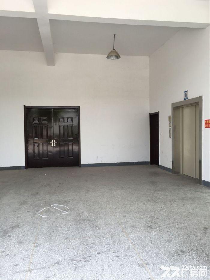 蚌埠高新区东海大道旁全新厂房对外出租-图(3)