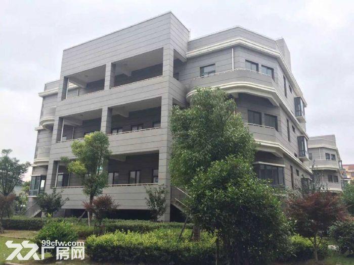 独栋整栋出租可展示可办公可仓储轻加工送地库和阳光大露台-图(1)