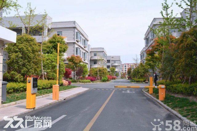 独栋整栋出租可展示可办公可仓储轻加工送地库和阳光大露台-图(4)