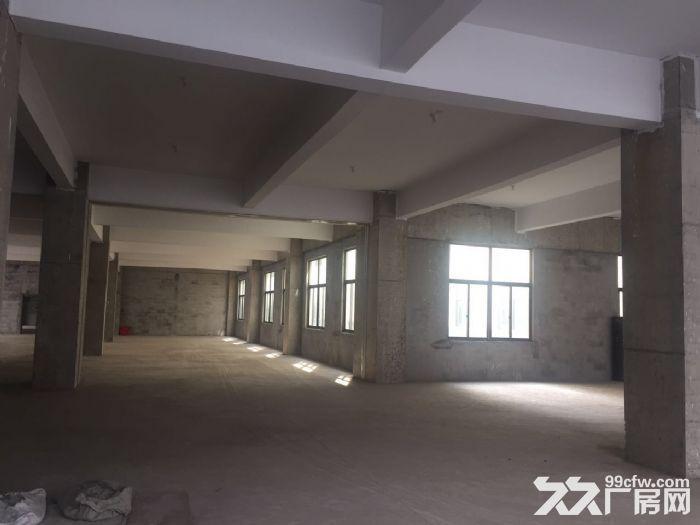 邹区工业园区三万平米全新厂房急租-图(3)