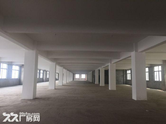 邹区工业园区三万平米全新厂房急租-图(4)