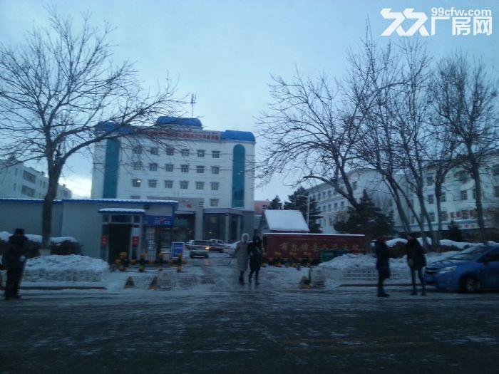 阿勒泰市布尔津县友谊峰路1.8万方国有资产拍卖出让-图(1)